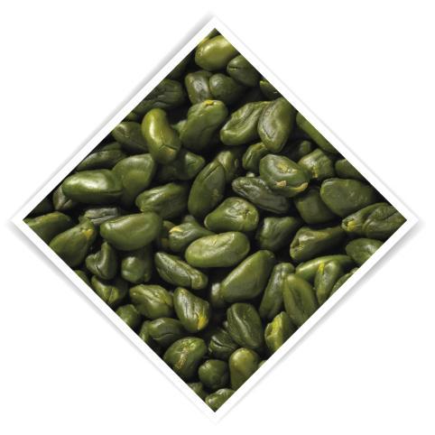 Pistaches vert 2